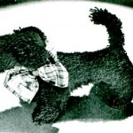 Loop Crochet Pattern – Vintage MacDougall Scottie Dog