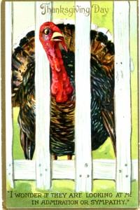 Vintage Crafts and More - Happy Thanksgiving Tom Turkey