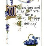 A Very Happy Christmas Forget Me Not Vintage Postcard