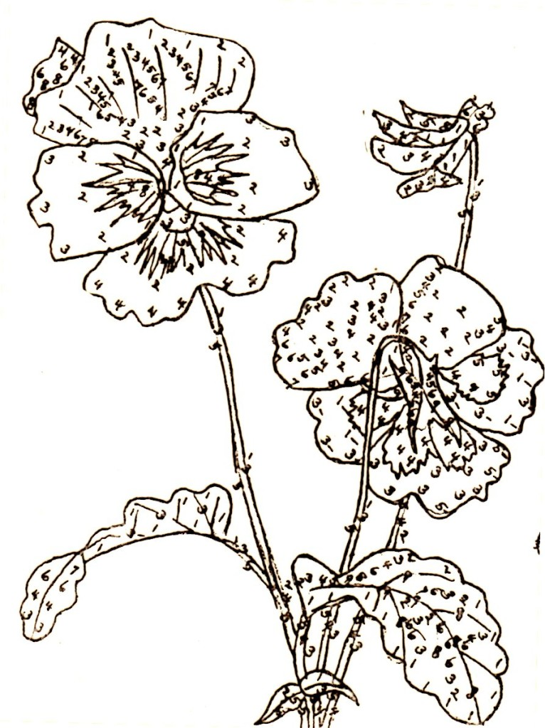 Belding Silks Pansy Embroidery Pattern Detail - Vintage Crafts and More