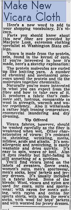 Vicara Newspaper Article