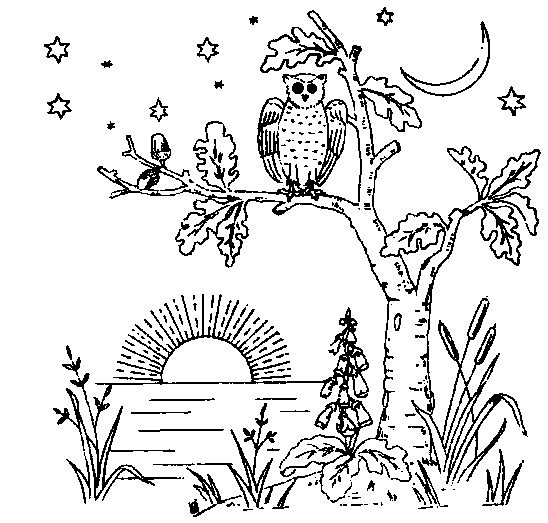 Owl Embroidery Pattern - Vintage Crafts and More