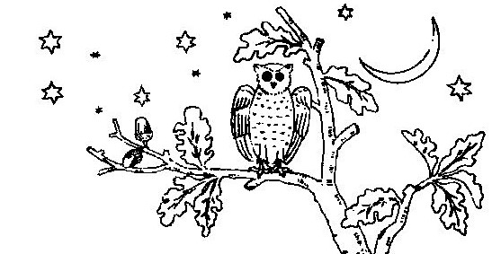 owl-in-a-tree-embroidery-pattern