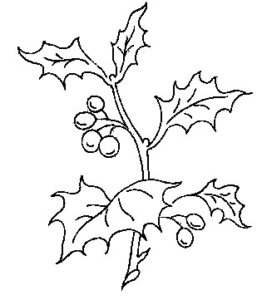 Holly and Berries Hand Embroidery Pattern