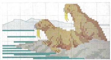 Arctic Animals in cross stitch Walrus